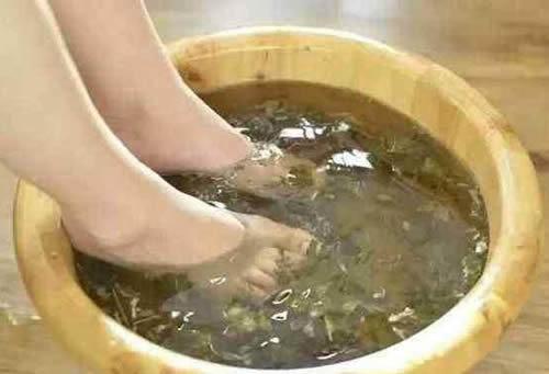 艾叶泡脚能减肥吗?