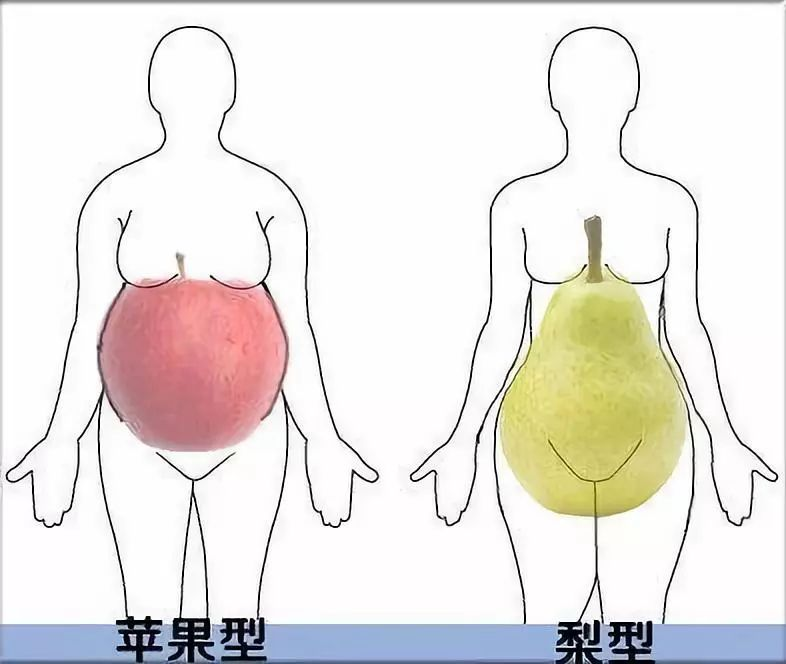 艾灸怎样减肥,这4点是重中之重!