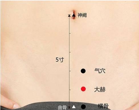 治疗早泄_大赫穴的准确穴位图及作用_艾灸穴位频道_艾灸TOP网