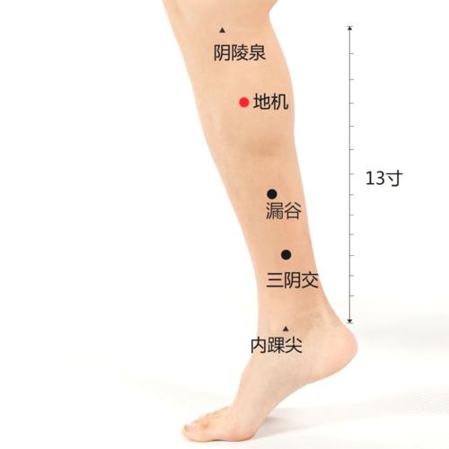 腿的穴位这几个要多灸,养腿就是养命